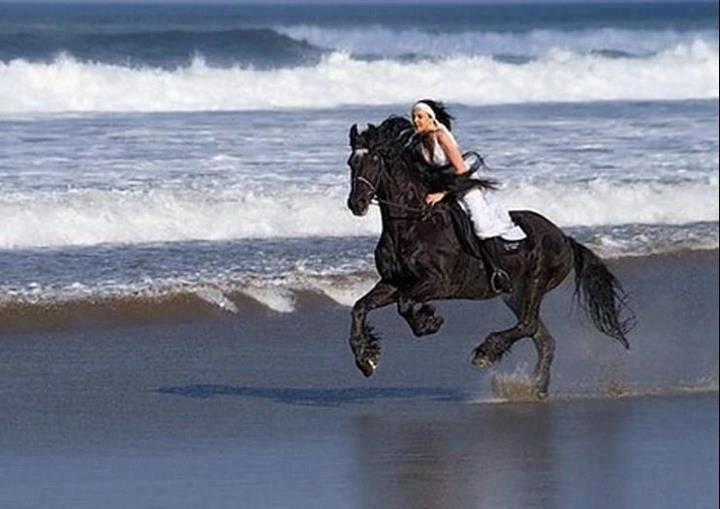 αλογο+κοπελα1