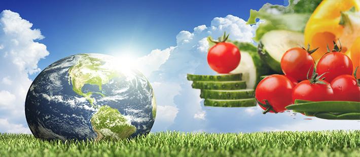 earth_food
