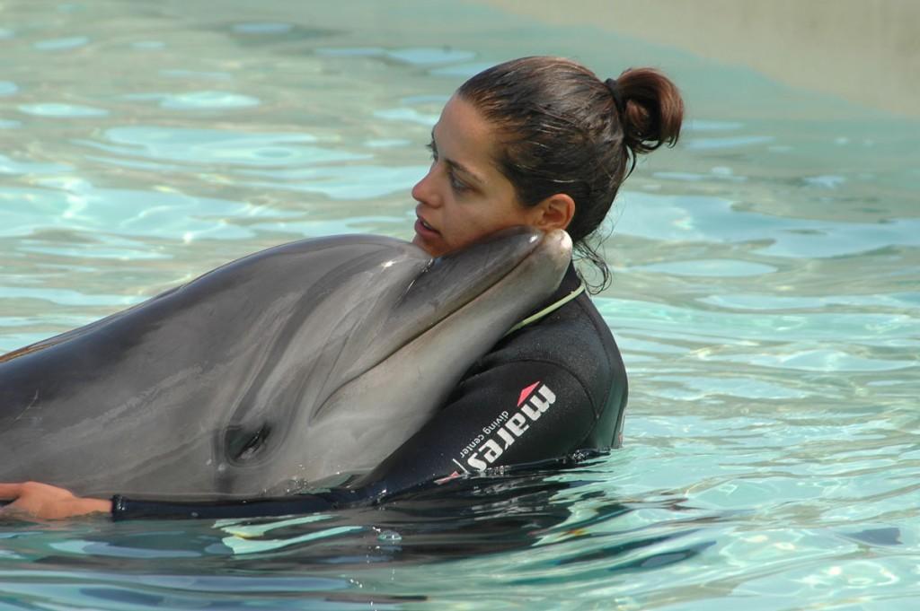 delfinia-3
