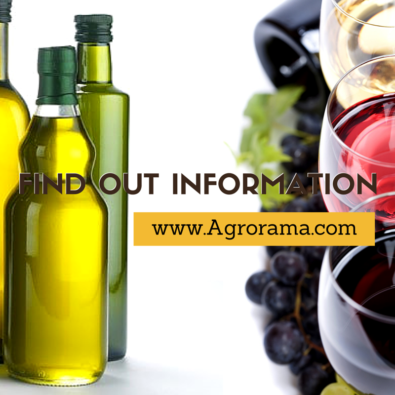 olive-oil-and-wine2