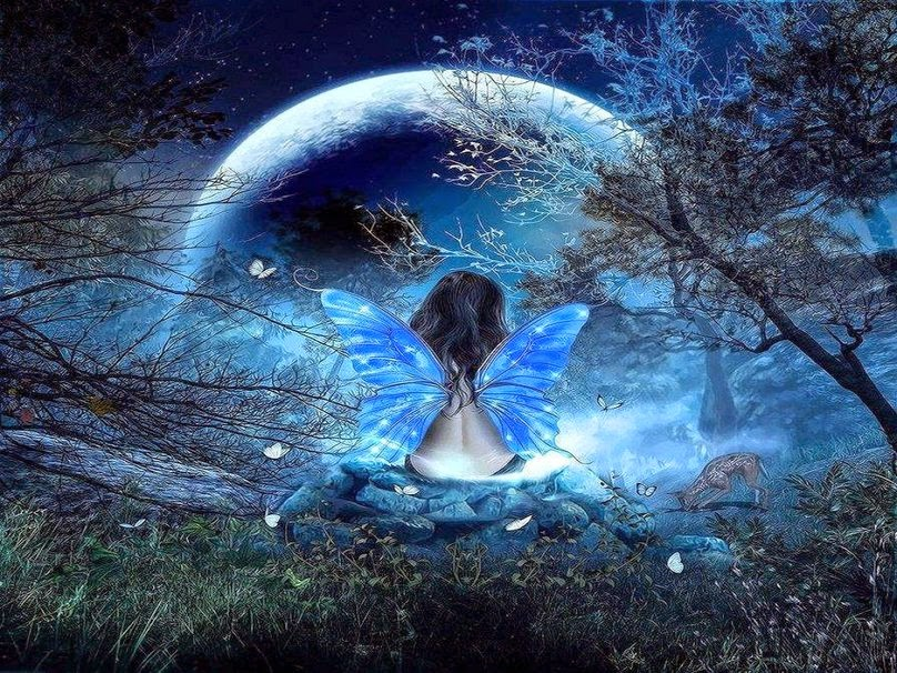 87670__butterfly-fantasy_p