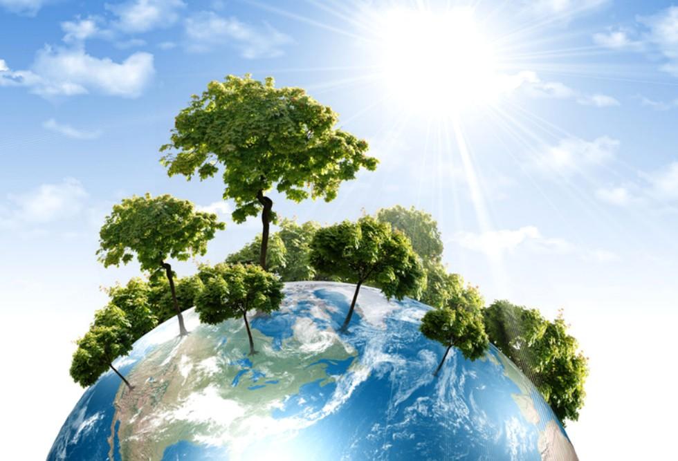 Αναχαίτιση της Κλιματικής Αλλαγής – η προσφορά των δασών emeis