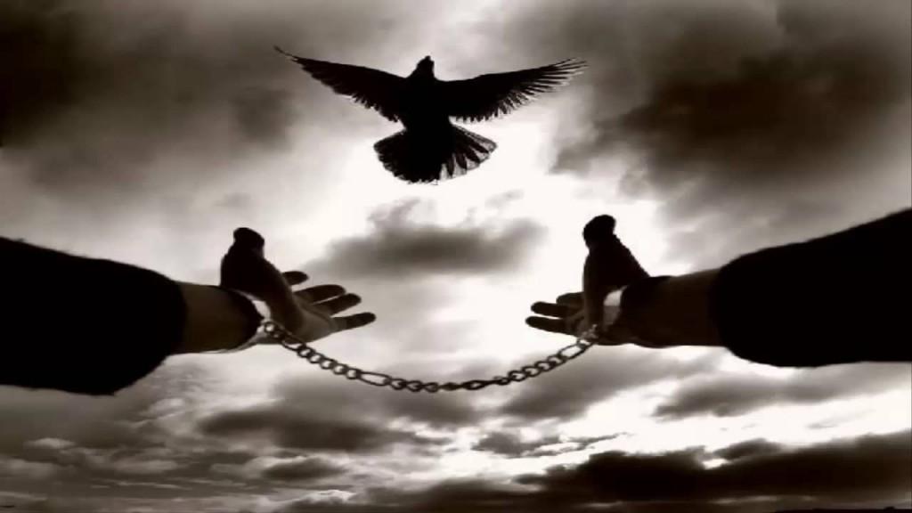 Η Ψευδαίσθηση της Ελευθερίας emeis