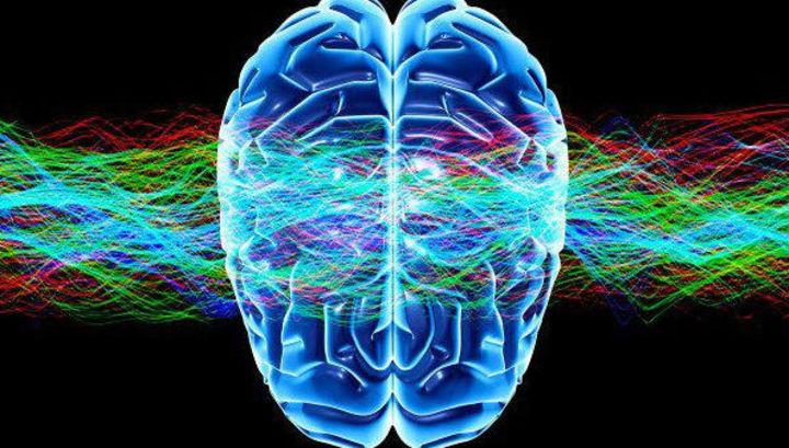 Οι Δύο Λοβοί του Εγκεφάλου emeis